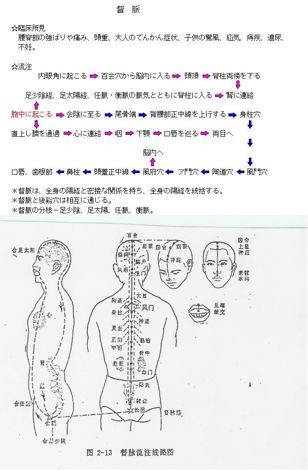 督脈の流注図