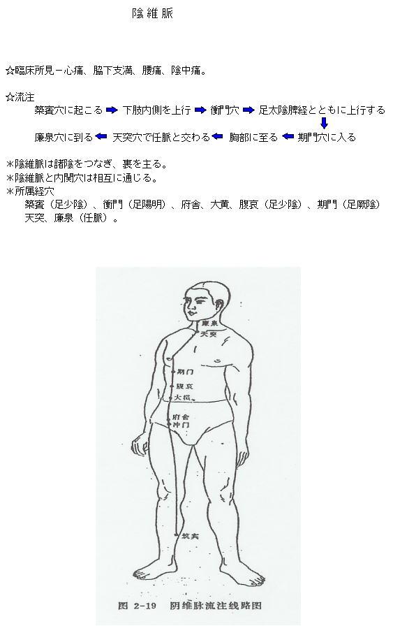 陰維脈の流注 – 中医鍼灸東京健...